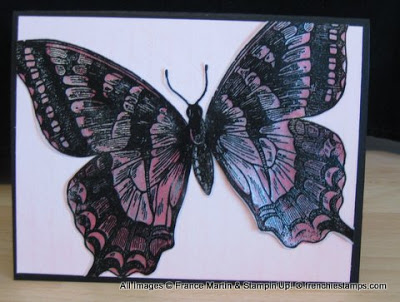 Shimmer Paint on Vellum and More Video