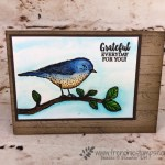 Watercolor card with Best Bird Stamp set and background with Hardwood. All product from Stampin