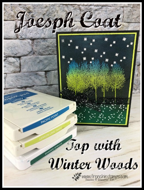 How to make a Joseph Coat and layer with Winter Woods stamp set. All product are from Stampin'Up! and can be purchase at frenchiestamps.com