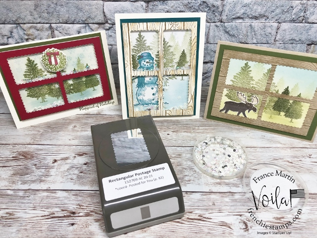Panel Window Shaker Cards with Rectangular Postage Stamp Punch