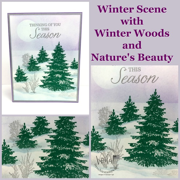 Winter Scene with Winter Wood.