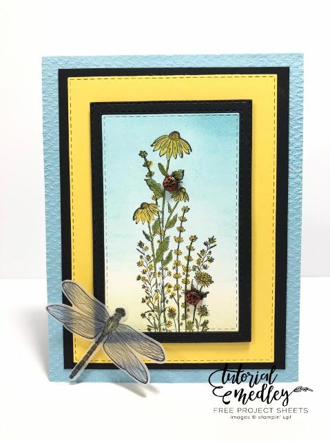 Dragonfly Garden Bundle