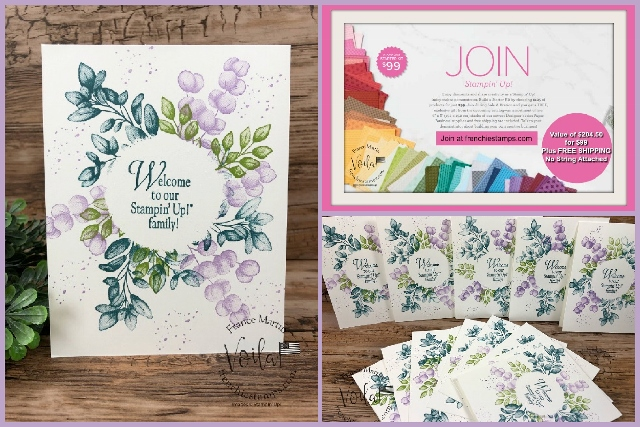 How to get over $200 of Stampin'Up!® Product for $99 and Free Shipping