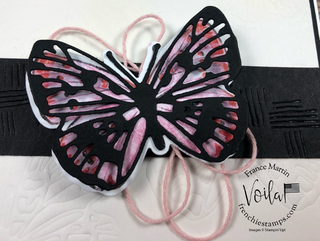 Butterfly Brilliance and Embossed with the Brilliant Wings Dies.