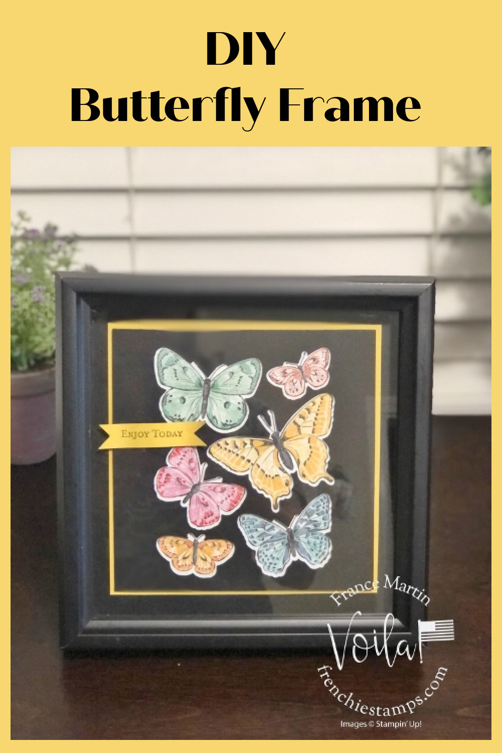DIY Simple Butterfly Frame