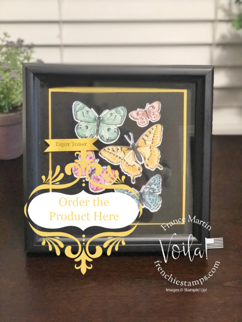 Simple Butterfly Frame with the Butterfly Brilliance