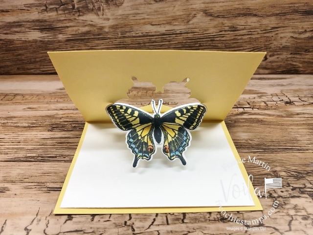 Butterfly Brilliance, Swing Pop Up Window Fun Fold.