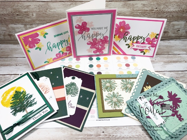 Stampin' Up! Color Coach for 2021-2023 In-Color.