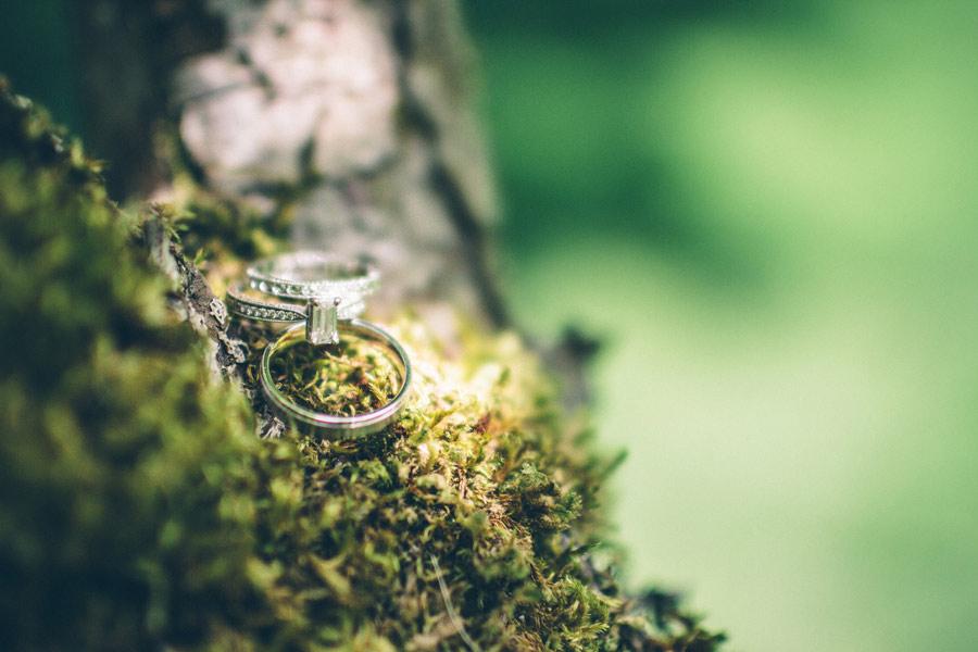 Backyard-Wedding-Animals-Giant-Letters-11
