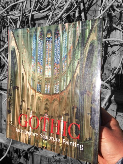"My copy of the book ""Gothic: Architecture, Sculpture, Painting"""