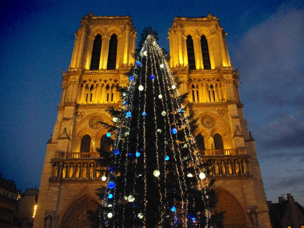 Discover the cathedral of Notre-Dame de Paris - French Moments