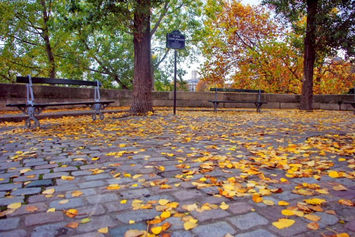 Ile Saint-Louis in Autumn, Paris © French Moments