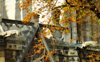 Paris in Autumn (Church of Saint-Germain-l'Auxerrois) © French Moments