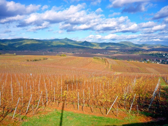 Autumn in France: in Alsace © French Moments