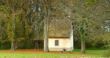 French forest in autumn © French Moments 25