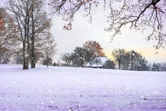 paragraph on winter season in french language
