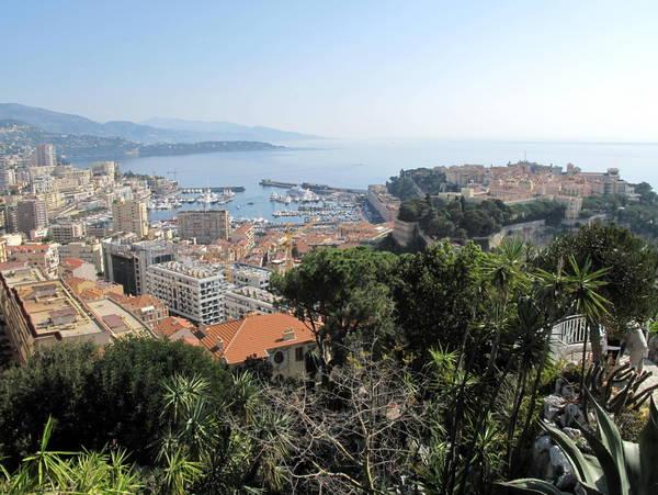 Monaco exotic garden by Tangopaso (Public Domain)