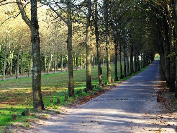 Allée de Chartres, Parc de Saint-Cloud © French Moments