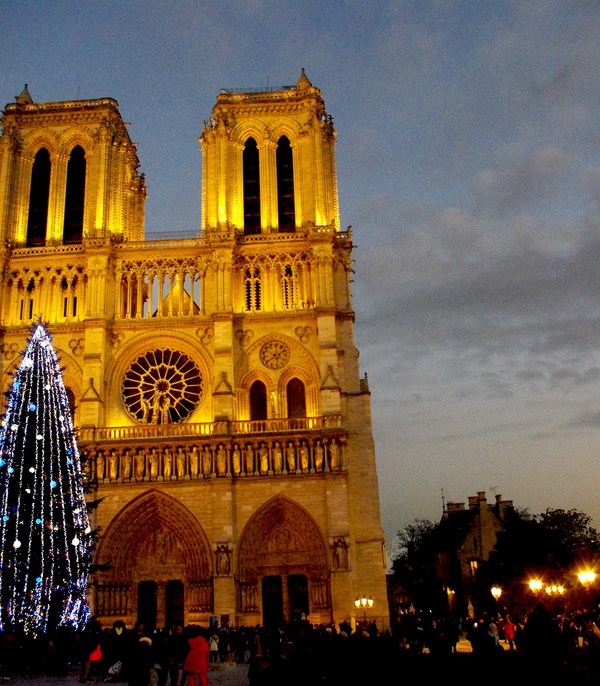 Christmas Tree of Notre-Dame © French Moments