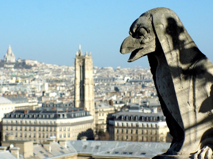 The chimera gallery, Towers of Notre-Dame © French Moments