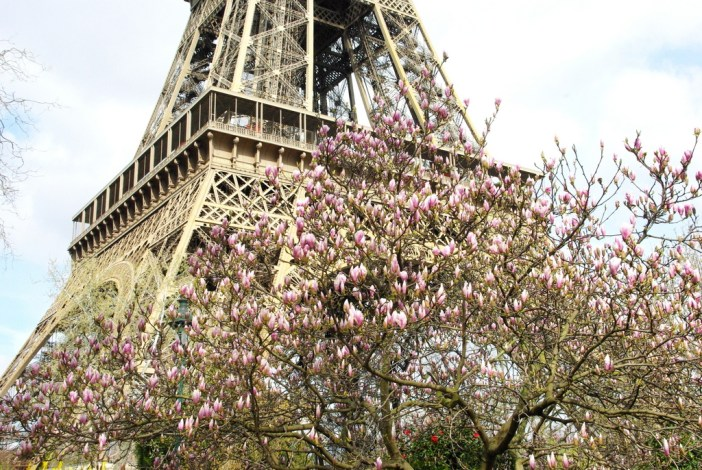 Spring at the Eiffel Tower 7 copyright French Moments