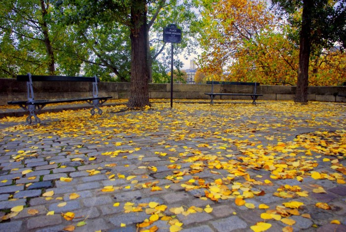Ile Saint Louis in Autumn © French Moments