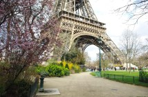 Spring at the Eiffel Tower 6 copyright French Moments