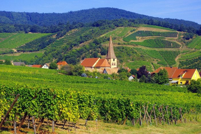 Discover the scenic Alsace Wine Route - French Moments