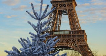 White Christmas Tree and Eiffel Tower 02 copyright French Moments