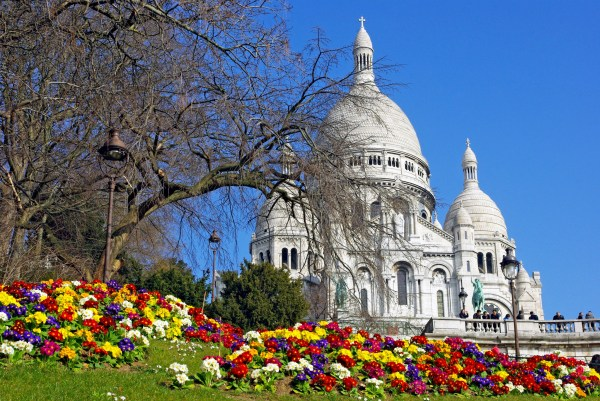 Spring Flowers And Perfect Sunny Day In Montmartre