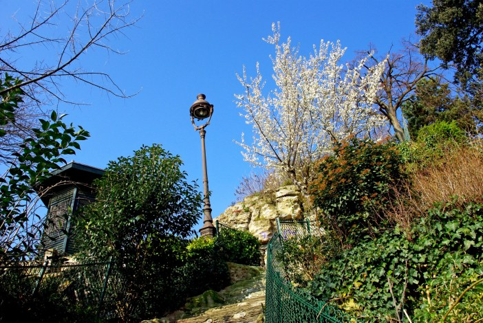 Tree in bloom in Square Louise Michel in Montmartre © French Moments
