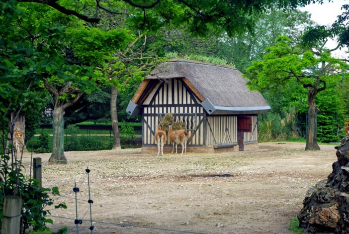 The Norman farm, Jardin d'Acclimatation © French Moments