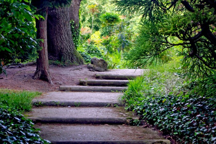 The stairs leading to a tropical forest? Parc de Boulogne © French Moments