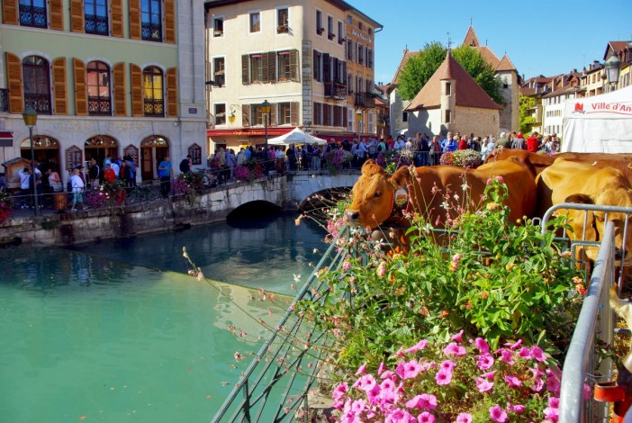 Return from the Alpine Pastures Festival, Annecy © French Moments