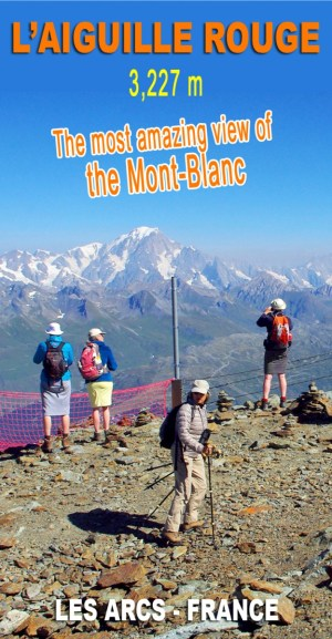 Discover the stunning panoramic view from the top of the Aiguille Rouge. The French, Swiss and Italian Alps without forgetting the Mont Blanc ! © French Moments