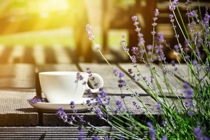 Coffee in Provence - Stock Photos from CharMoment - Shutterstock