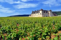 Clos de Vougeot © French Moments