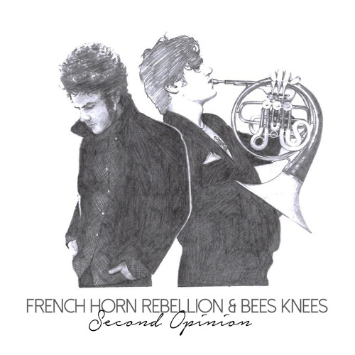 Listen: French Horn Rebellion - Second Opinion (Bee's Knees Remix)