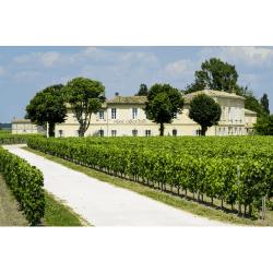 French Vineyard accommodation  at Chateau Franc Grace Dieu, Bordeaux
