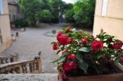 Chateau Jonquieres garden