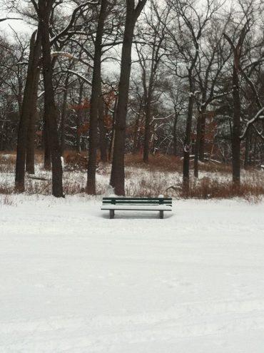 banc-high-park-neige