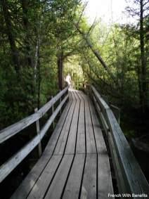 pont-conservation-halton