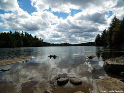 parc-algonquin-eau
