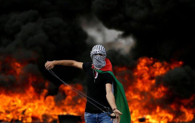 Fusilamientos sionistas en la frontera y Cisjordania, y robo de Palestina.