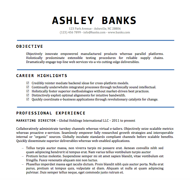 Resume Resume Example Word Doc example of resume doc templates word and builder