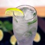 Sugar-Free Mocktail Mojito