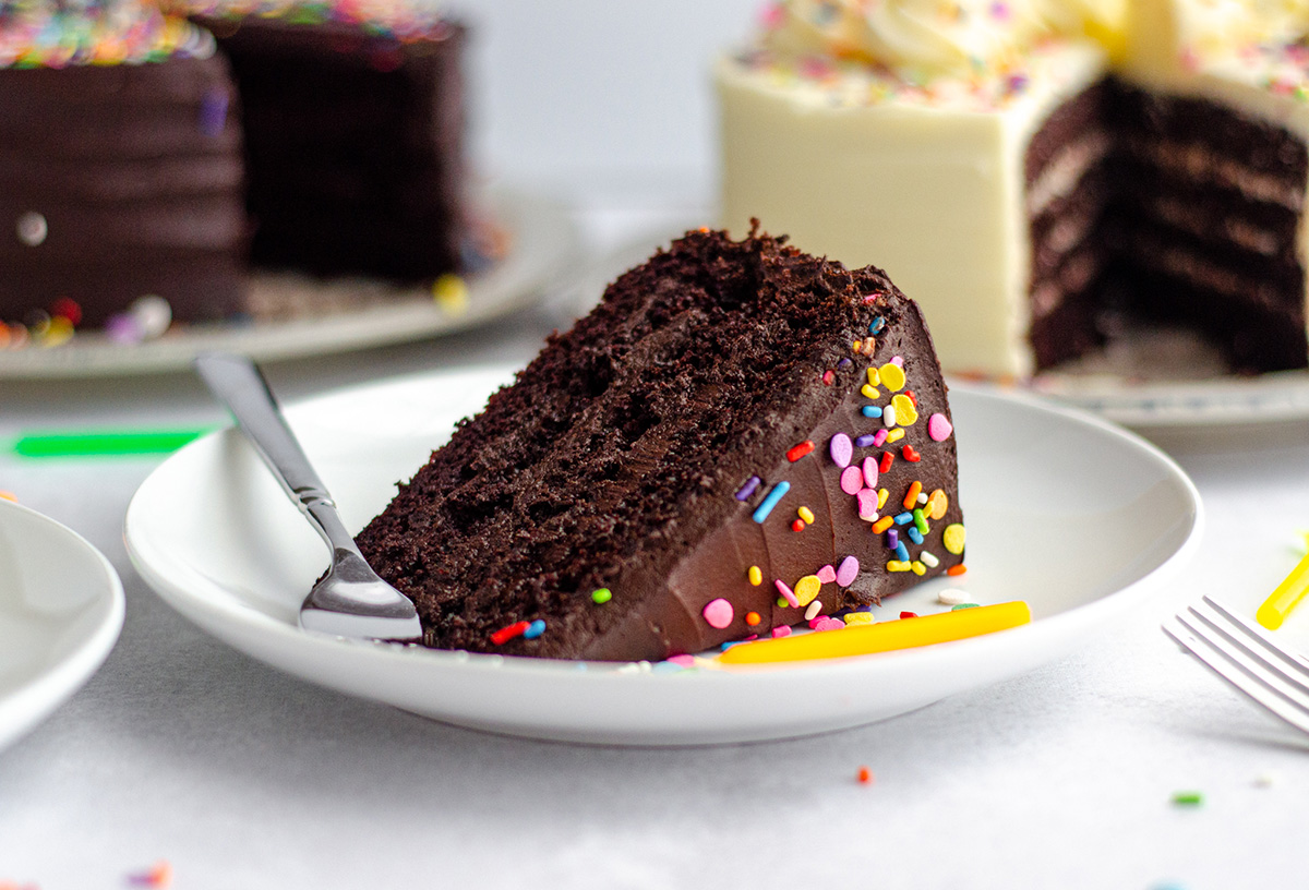 slice of chocolate layer cake with rainbow sprinkles on a white plate with a fork