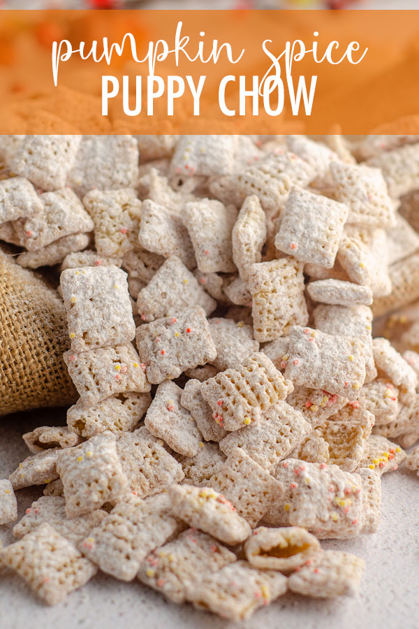 This fall inspired version of the popular snack is bursting with pumpkin and cinnamon flavor in every crunchy bite.