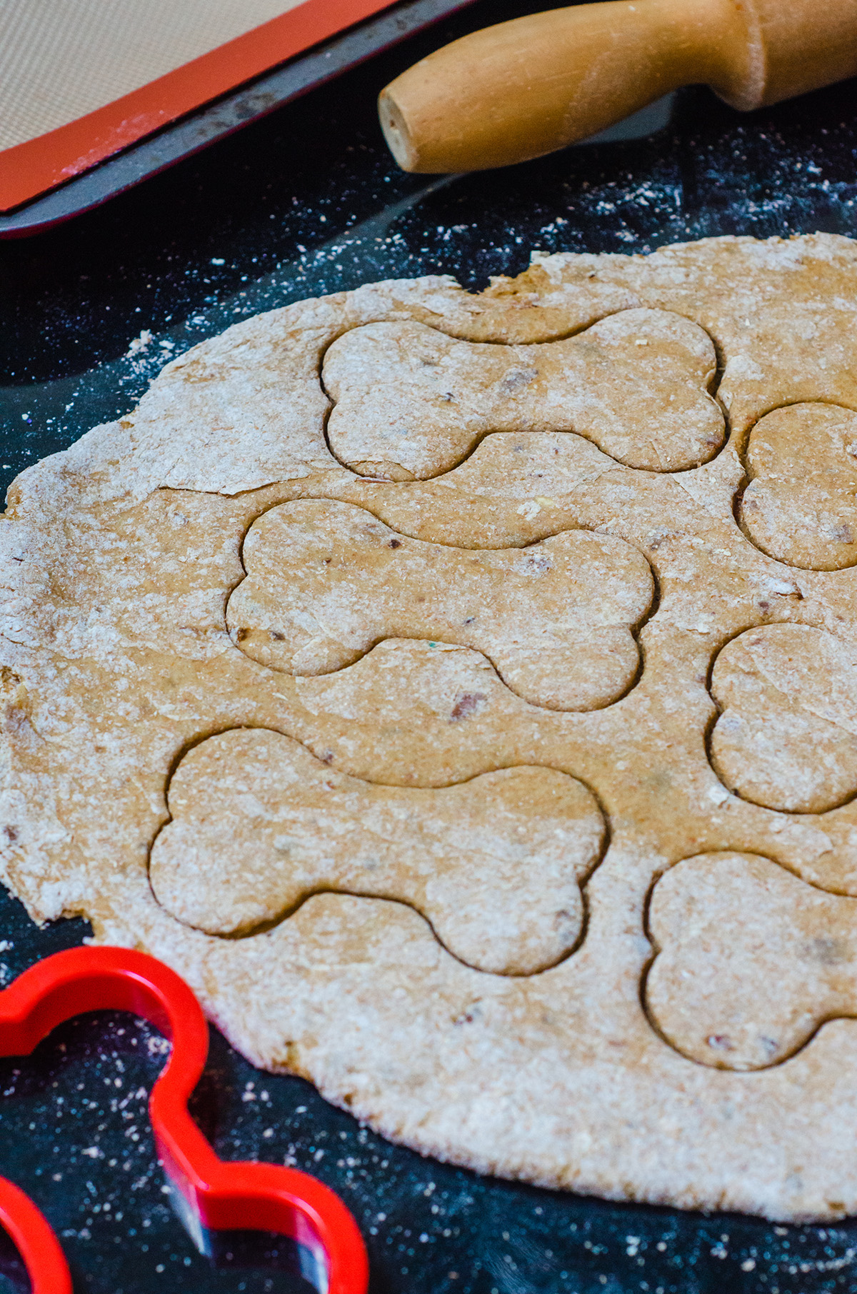 homemade pumpkin dog treat dough with a bone cookie cutter