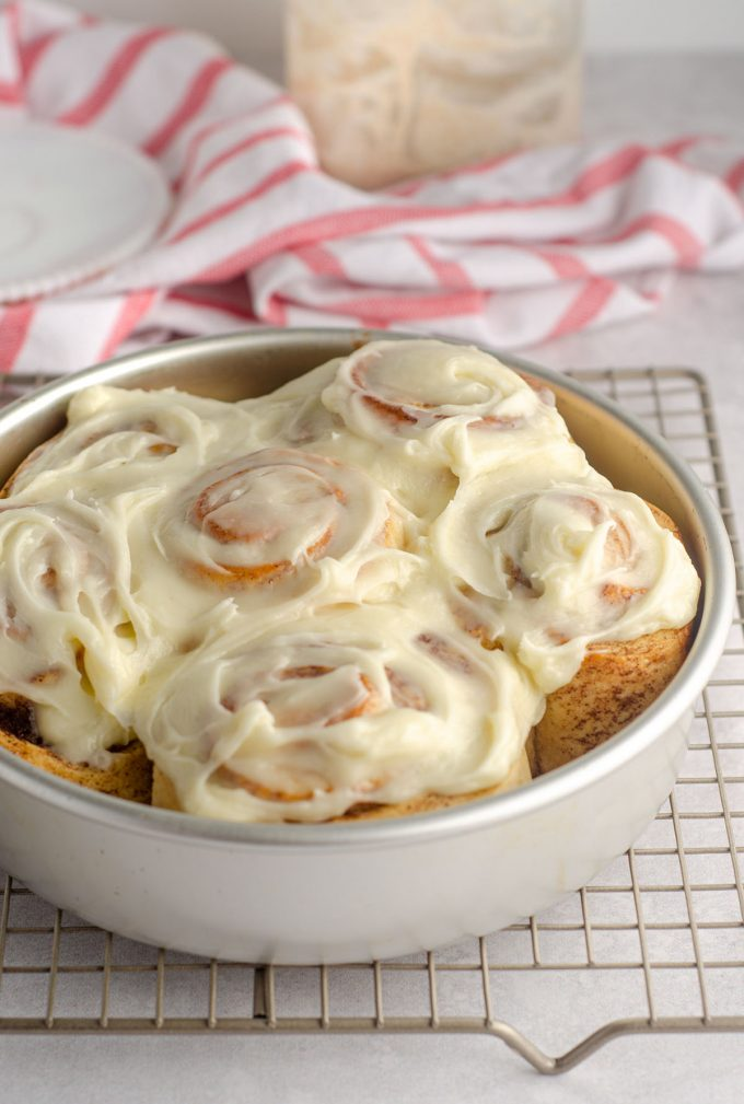 sourdough cinnamon rolls with cream cheese icing sitting in a baking pan on a cooling rack
